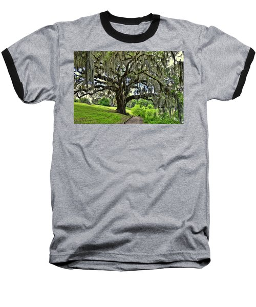 Middleton Place Oak  Baseball T-Shirt by Allen Beatty