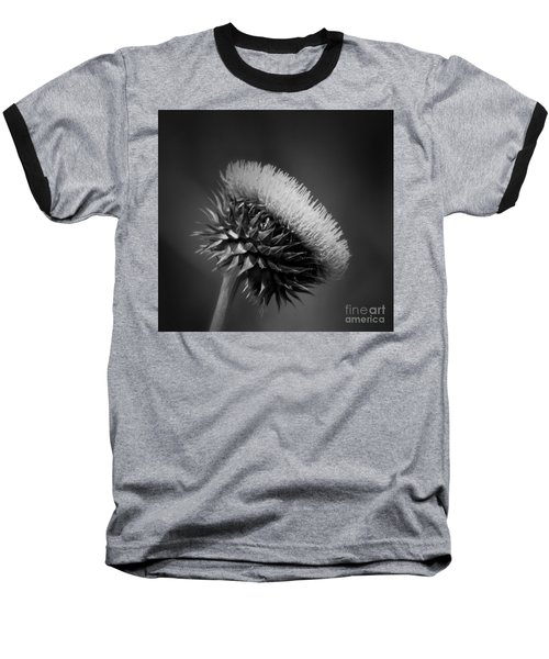 Milk Thistle Bw Baseball T-Shirt by Maria Urso