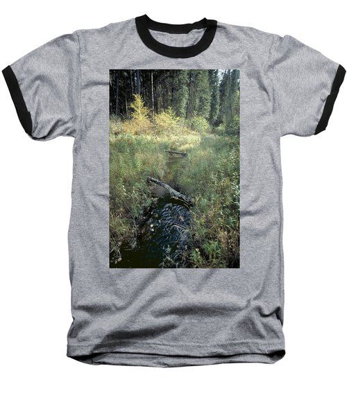 Mississippi River Headwaters Baseball T-Shirt