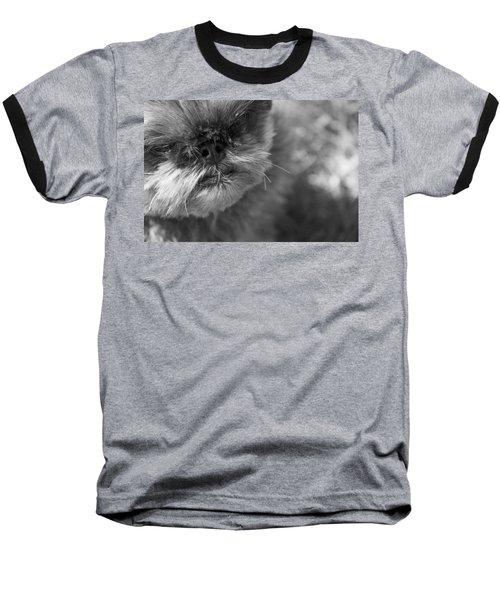 Moby Baseball T-Shirt