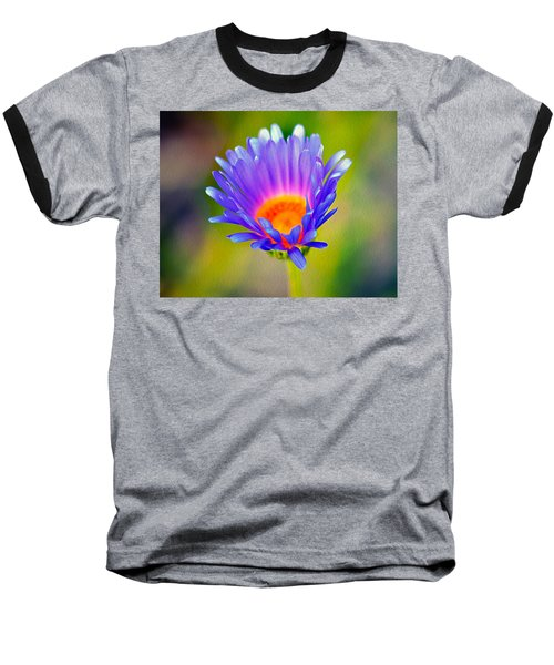Mojave Aster Baseball T-Shirt