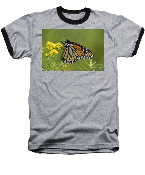 Monarch 2014 Baseball T-Shirt
