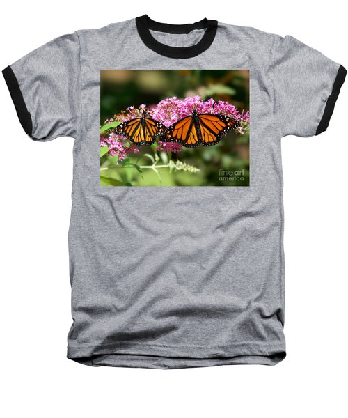 Monarch Butterflies Baseball T-Shirt by Liz Masoner