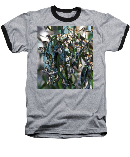 Monarch Butterflies Natural Bridges Baseball T-Shirt