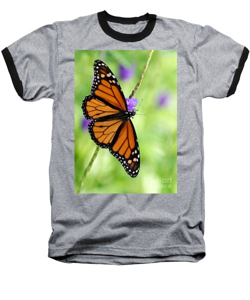 Monarch Butterfly In Spring Baseball T-Shirt
