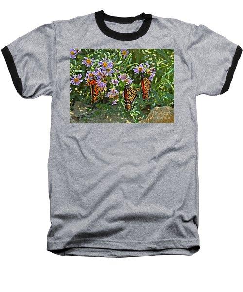 Monarch Butterfly Trio Baseball T-Shirt