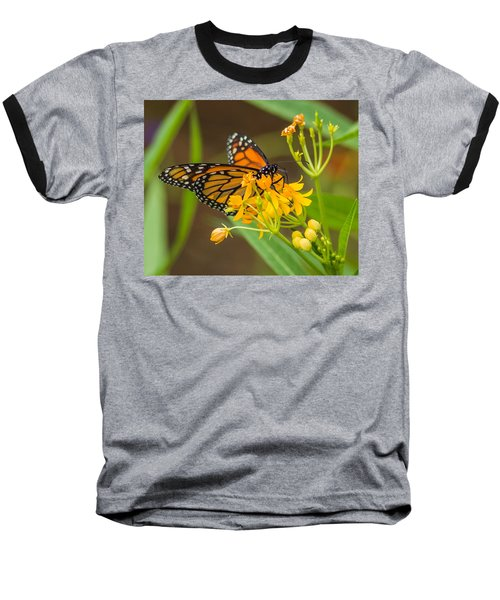 Baseball T-Shirt featuring the photograph Monarch by Jane Luxton