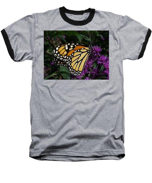 Baseball T-Shirt featuring the photograph Monarch by Lingfai Leung