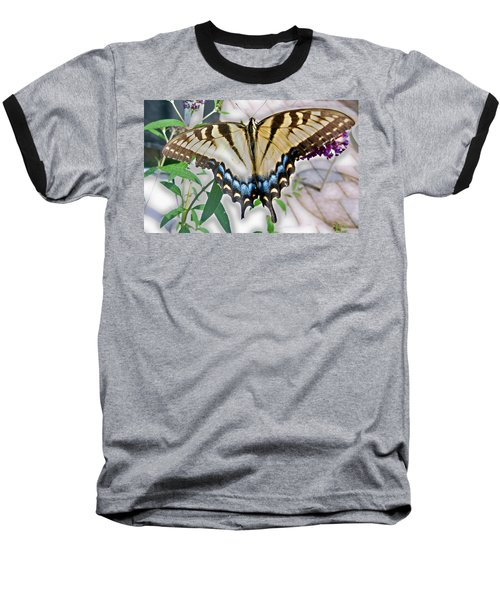 Baseball T-Shirt featuring the photograph Monarch Majesty by Judith Morris