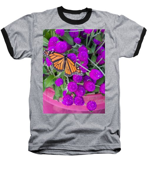 Monarch On Bachelor Buttons Baseball T-Shirt