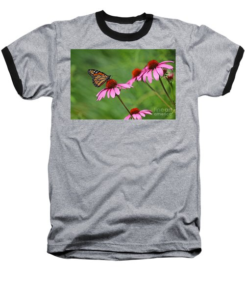 Monarch On Garden Coneflowers Baseball T-Shirt