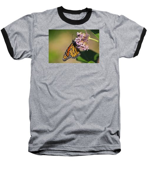 Monarch On Milkweed Baseball T-Shirt by Shelly Gunderson