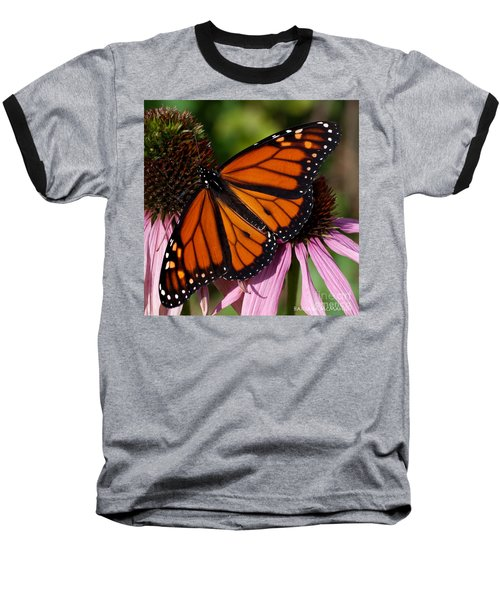 Baseball T-Shirt featuring the photograph Monarch On Purple Coneflower by Barbara McMahon