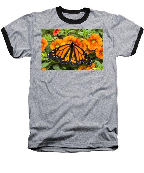 Monarch Resting Baseball T-Shirt
