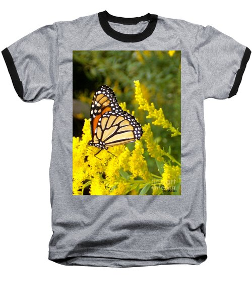 Baseball T-Shirt featuring the photograph Monarch by Sara  Raber