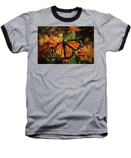 Monarch Spotlight. Baseball T-Shirt