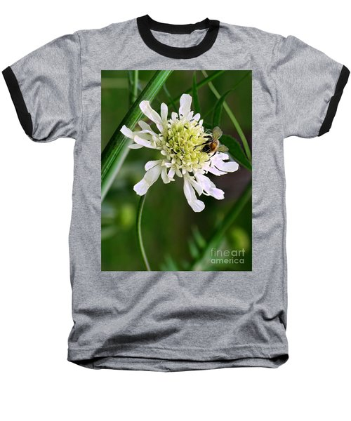 Baseball T-Shirt featuring the photograph Monet's Garden Bee. Giverny by Jennie Breeze