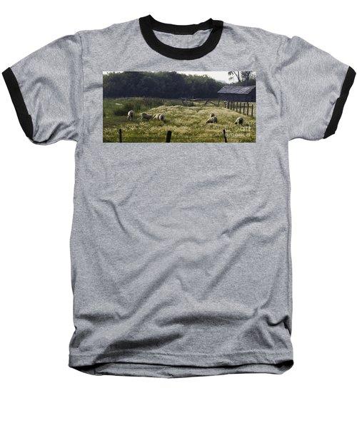Montana Graze Baseball T-Shirt