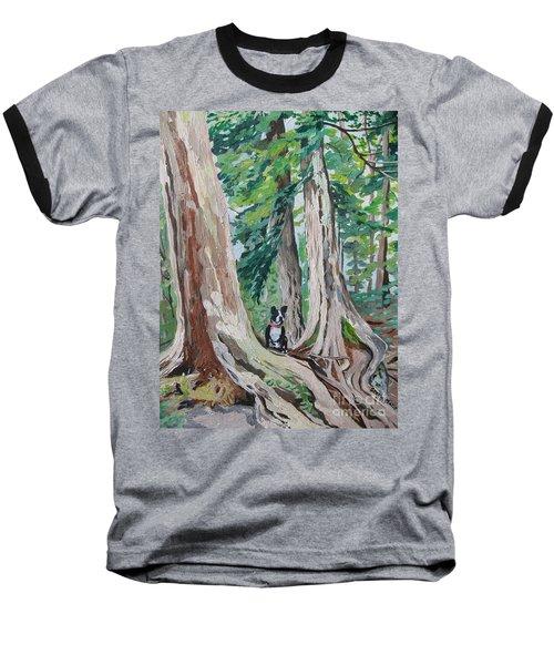 Monty's Travels Baseball T-Shirt