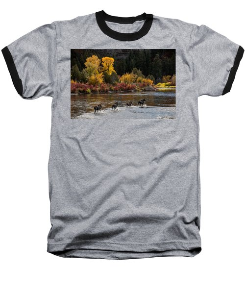 Moose Crossing Baseball T-Shirt