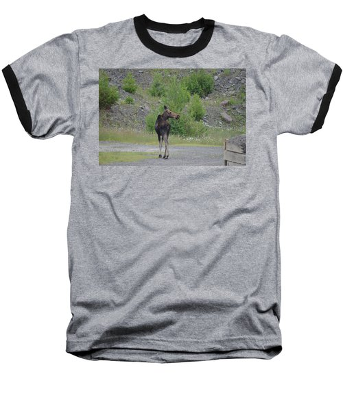 Baseball T-Shirt featuring the photograph Moose by James Petersen