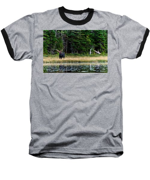 Moose Baseball T-Shirt by Ulrich Schade