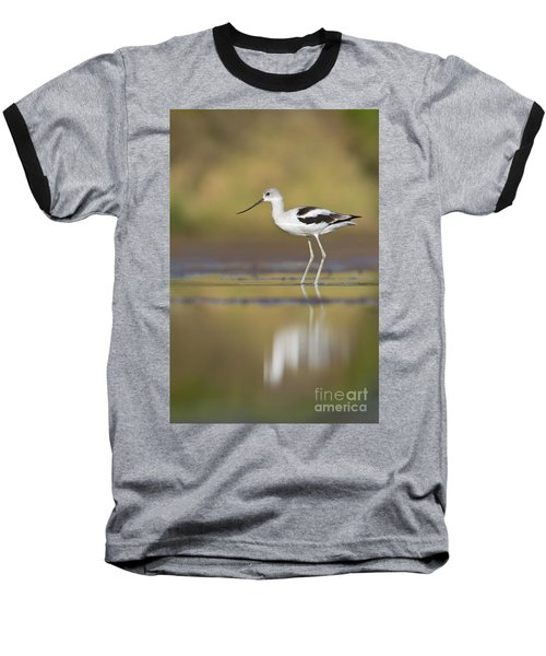 Baseball T-Shirt featuring the photograph Morning Avocet by Bryan Keil