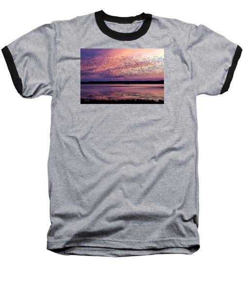 Morning Commute Baseball T-Shirt by Joan Davis
