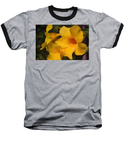 Baseball T-Shirt featuring the photograph Morning  Delight by Miguel Winterpacht