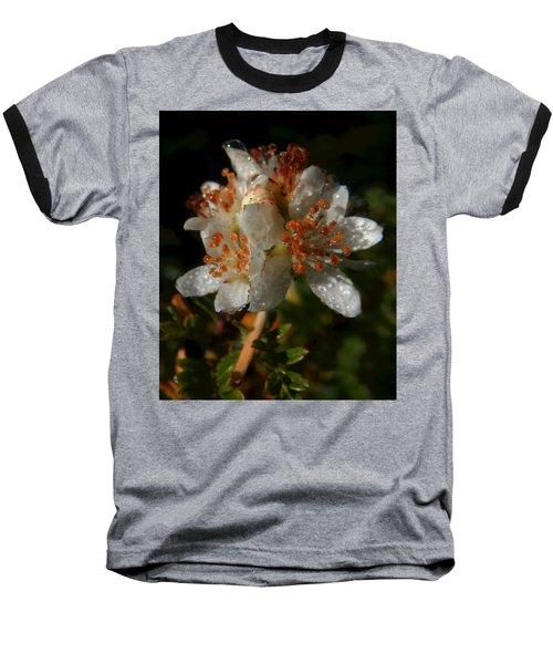 Morning Dew Baseball T-Shirt by Pamela Walton