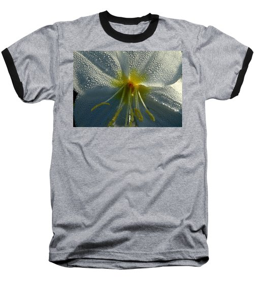 Morning Dew Baseball T-Shirt by Steven Reed