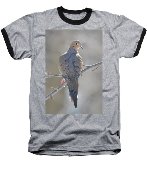 Mourning Dove Baseball T-Shirt by Richard Bryce and Family