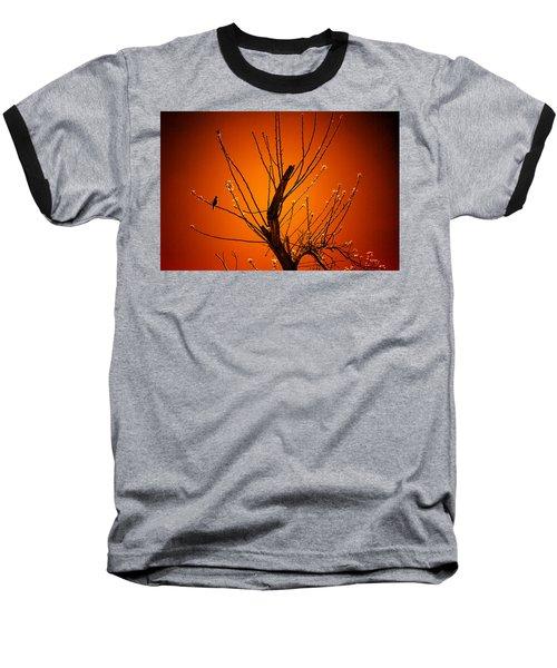 Morning Dove Sunrise Baseball T-Shirt