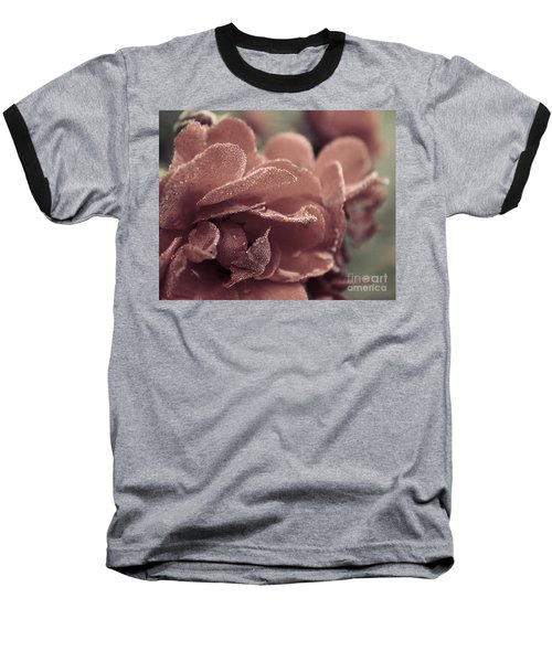 Morning Rose Baseball T-Shirt by Melissa Petrey