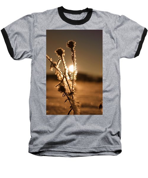 Baseball T-Shirt featuring the photograph Morning Walk by Miguel Winterpacht