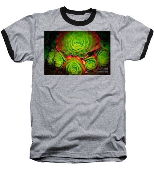 Morro Bay Echeveria Baseball T-Shirt