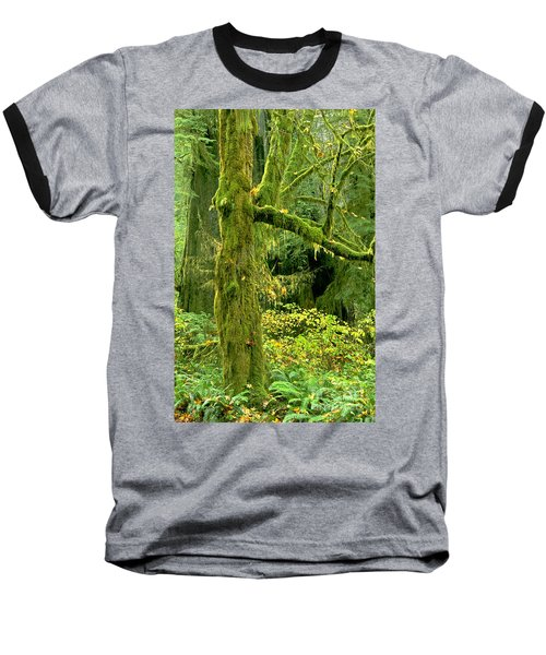 Baseball T-Shirt featuring the photograph Moss Draped Big Leaf Maple California by Dave Welling