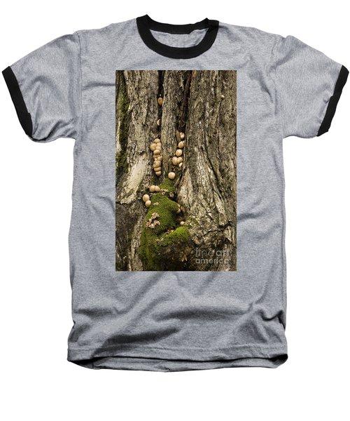 Moss-shrooms On A Tree Baseball T-Shirt