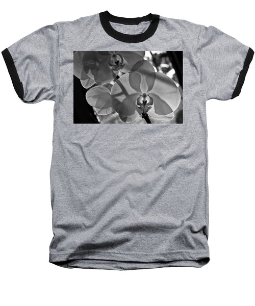 Baseball T-Shirt featuring the photograph Moth Orchid Backlit by Ron White