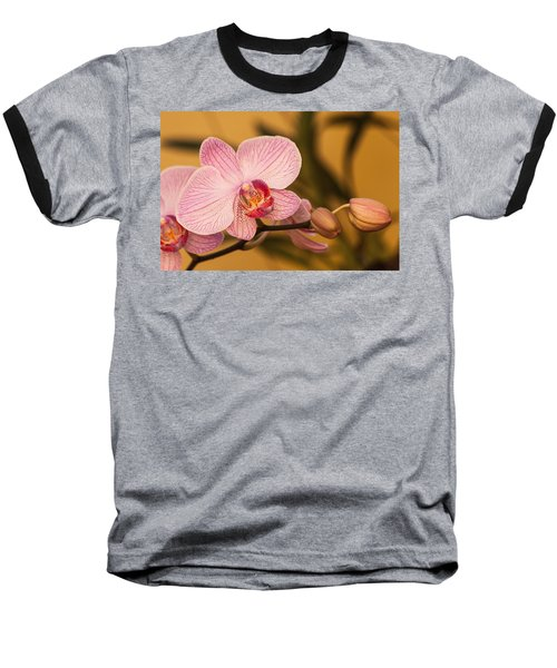 Moth Orchid Baseball T-Shirt