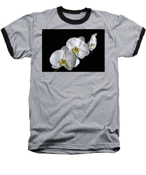 Moth Orchid Trio Baseball T-Shirt by Ron White
