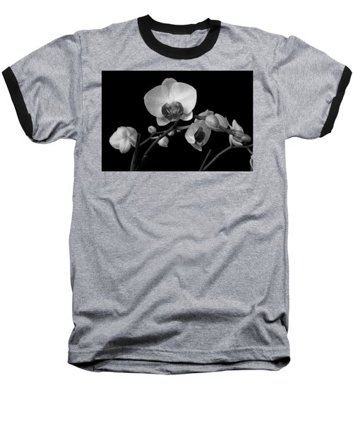Moth Orchids Baseball T-Shirt by Ron White