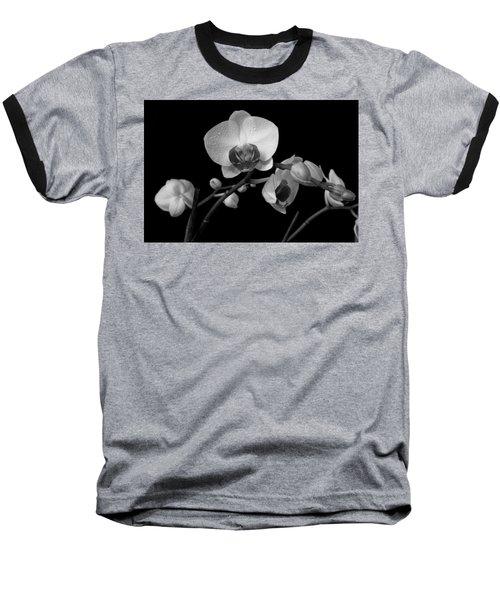 Moth Orchids Baseball T-Shirt
