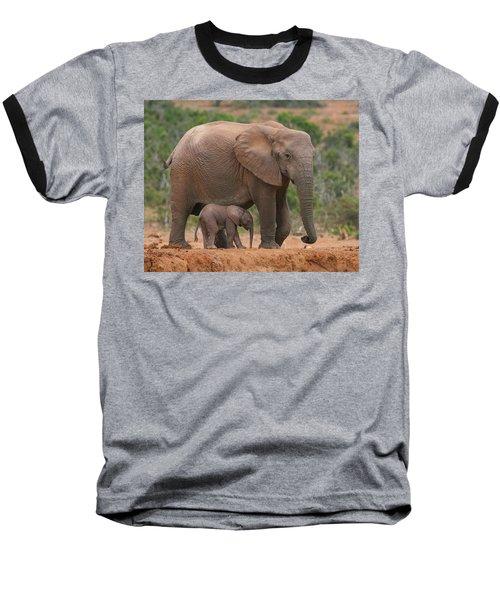 Mother And Calf Baseball T-Shirt