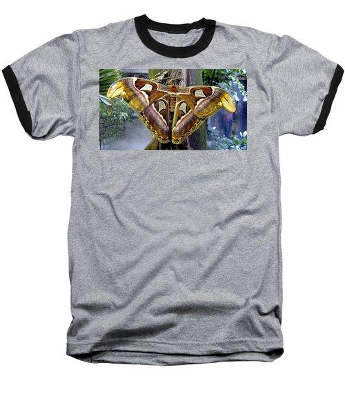 Atlas Moth Baseball T-Shirt