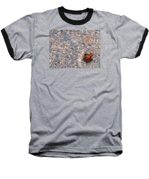 Mount Saint Helen's Frog Froggy Baseball T-Shirt