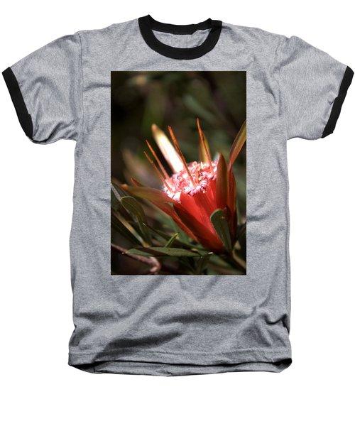 Baseball T-Shirt featuring the photograph Mountain Devil by Miroslava Jurcik