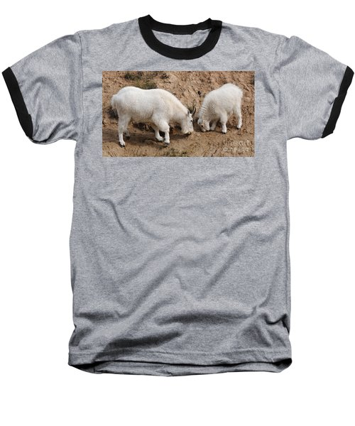 Mountain Goats At The Salt Lick Baseball T-Shirt by Vivian Christopher