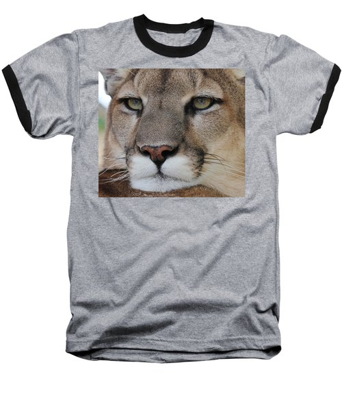 Mountain Lion Portrait 2 Baseball T-Shirt