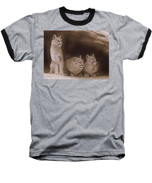 Mountain Lion Trio On Alert Baseball T-Shirt by Diane Alexander